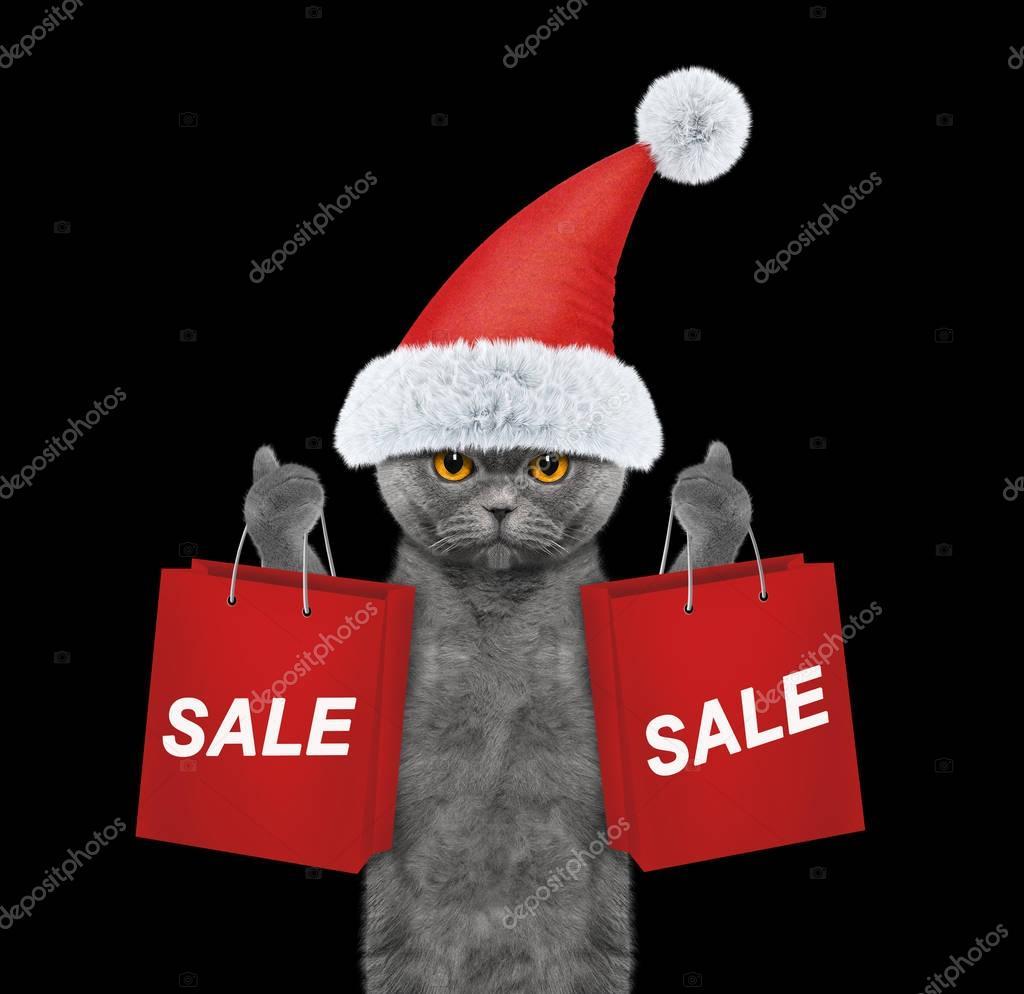 Katze mit Christmas Partykleid hochhalten mit Einkaufstasche ...