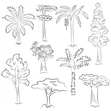 Hand Drawn Set of Trees. Doodle Drawings of Palms, Sequoia, Aloe, Acacia, Ceiba  in Sketch Style.