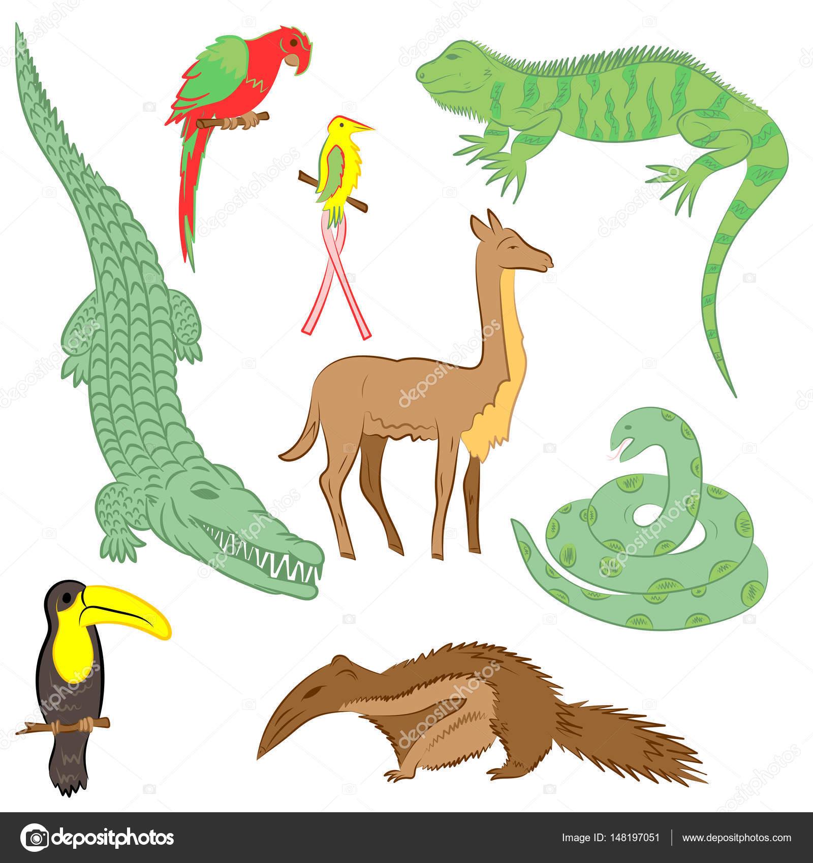 Disegni Di Coccodrilli Colorati Animali Colorati Disegnati A Mano