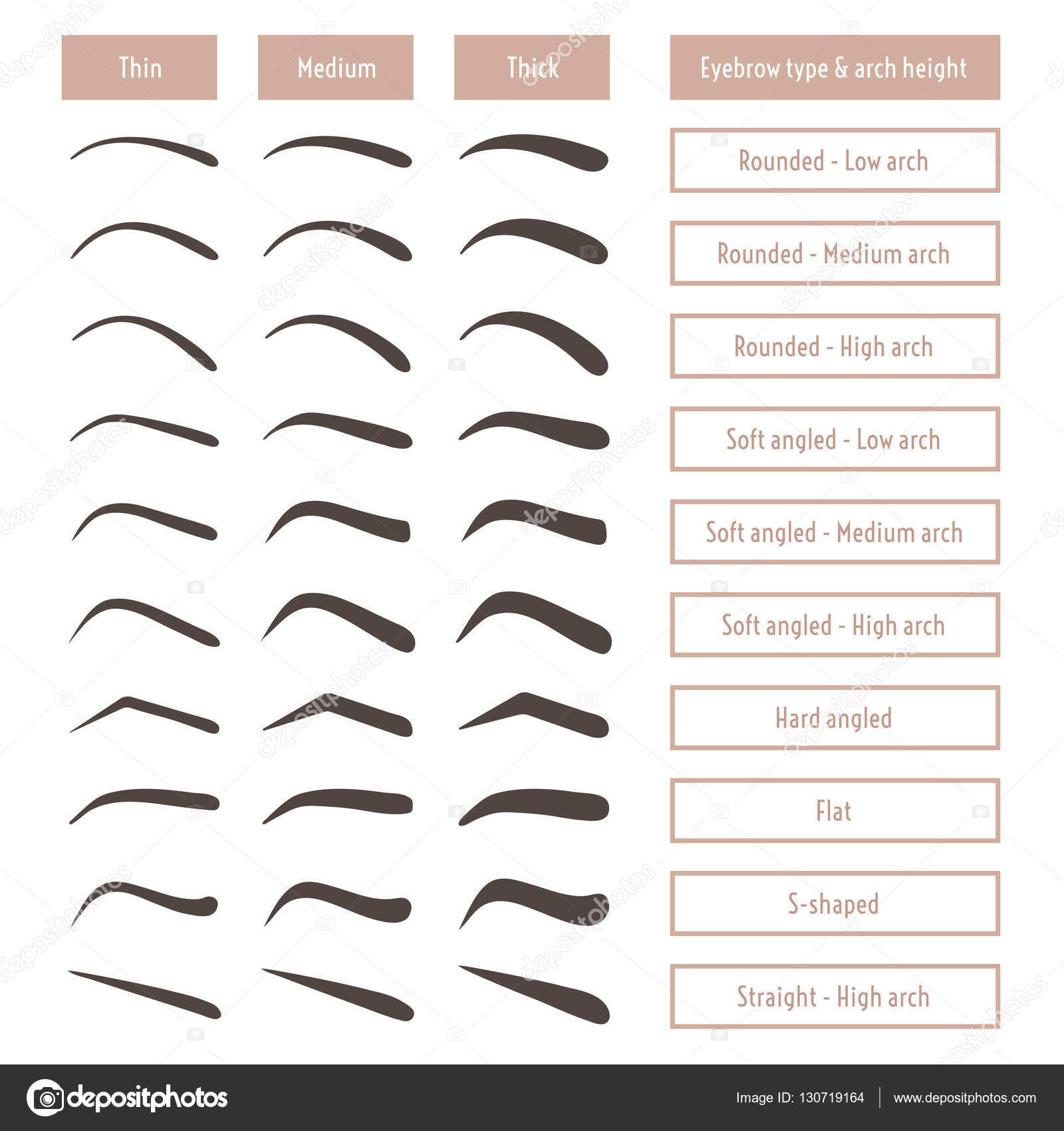 Eyebrow Shapes Stock Vectors Royalty Free Eyebrow Shapes
