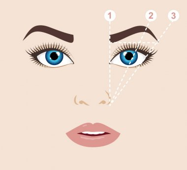 Woman face and eyebrow scheme (mapping). Trimming. Vector illustration.