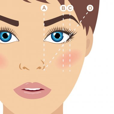 Eyebrow scheme. Trimming. How to shape your eyebrows. Vector illustration.