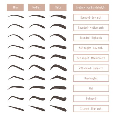 Eyebrow shape types. Vector illustration eyebrows with captions. Trimming set. Vector collection of brows with different thickness.