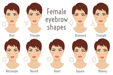 Eyebrow shapes suitable to different woman type face. Vector illustration.