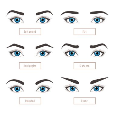 Eyebrow shape types. Classic type. Vector illustration eyebrows with eyes with captions. Trimming set.