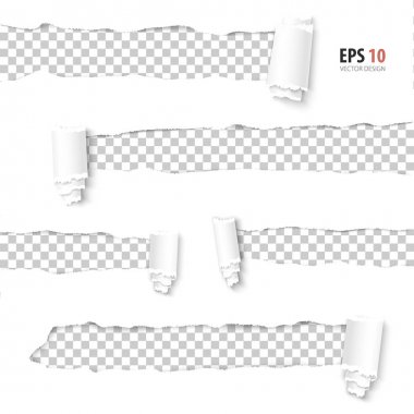 Torn paper vector. Collection of holes in white paper with transparent background.