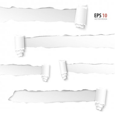 Torn paper vector. Collection of holes in white paper.
