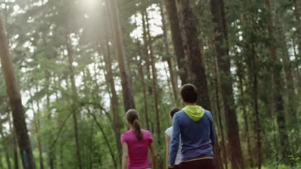 Menschen, die in einem Wald gehen