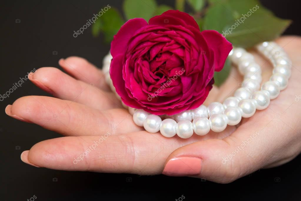 Beautiful red rose with pearls in a female hand — Stock ...