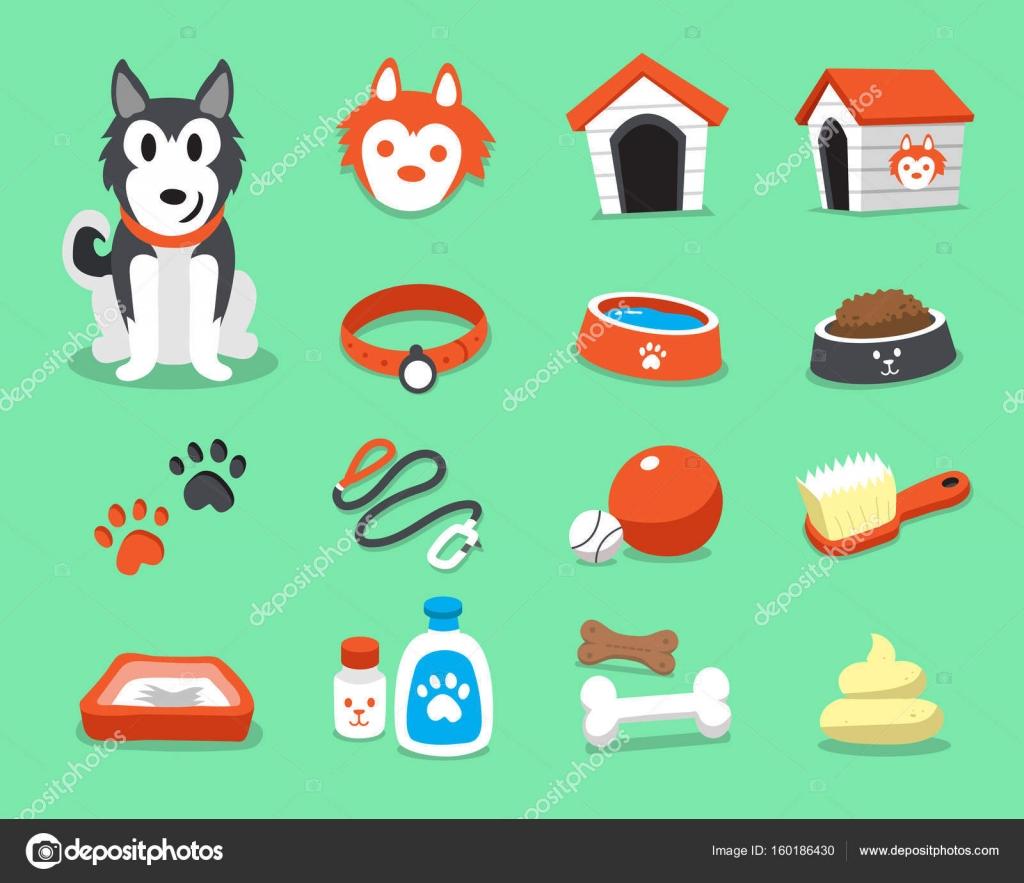 Chien husky sibérien de dessin animé et accessoires fixés \u2014 Image  vectorielle