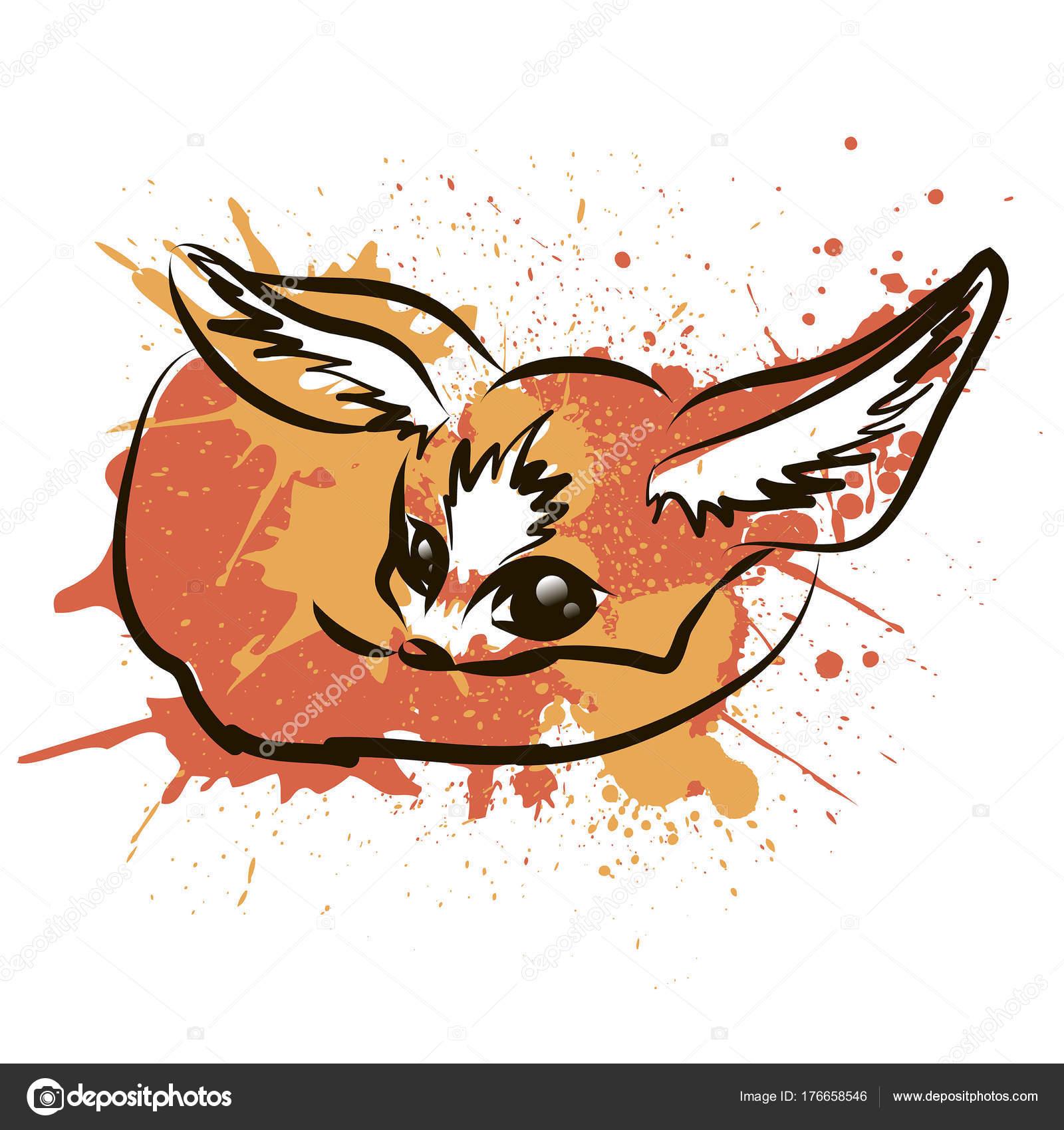 - Pagina da colorare fennec fox ...