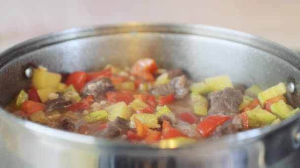 Dušené hovězí se zeleninou nebo guláš, tradiční maďarské jídlo