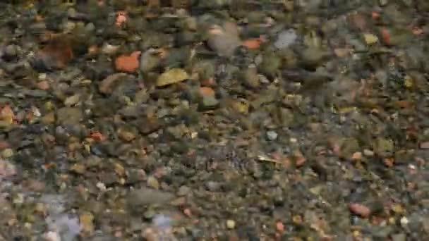 Felülnézet kövek a folyón. A Rock növénytakaró víz háttérrel. Kis apró kövek patakok.
