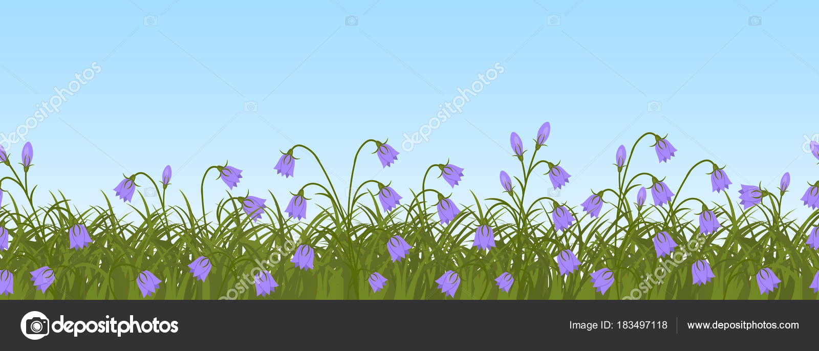 green grass blue sky flowers tropical purple bell flowers green grass blue sky background border spring stock vector