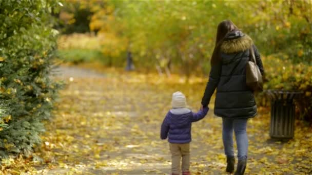 Matka a dcera chůzi, drželi se za ruce v parku. Jsou na sobě teplé oblečení, podzimní sezóny. Pohled zezadu