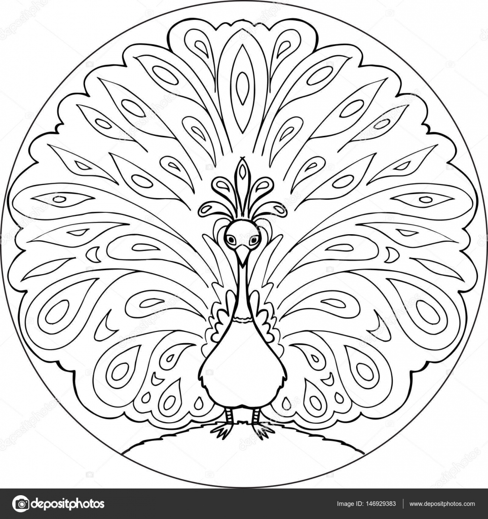 Vector de mandala para colorear pavo real — Vector de stock ...