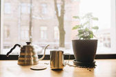 Az ablak és az ablakpárkányon, Dobó, kávé, zöld virág, a nyári mear