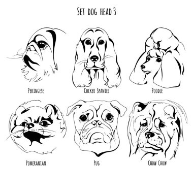 Set dog head 3