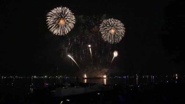 firework festival floral theme night sky stock video