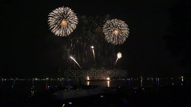 Firework festival floral theme night sky