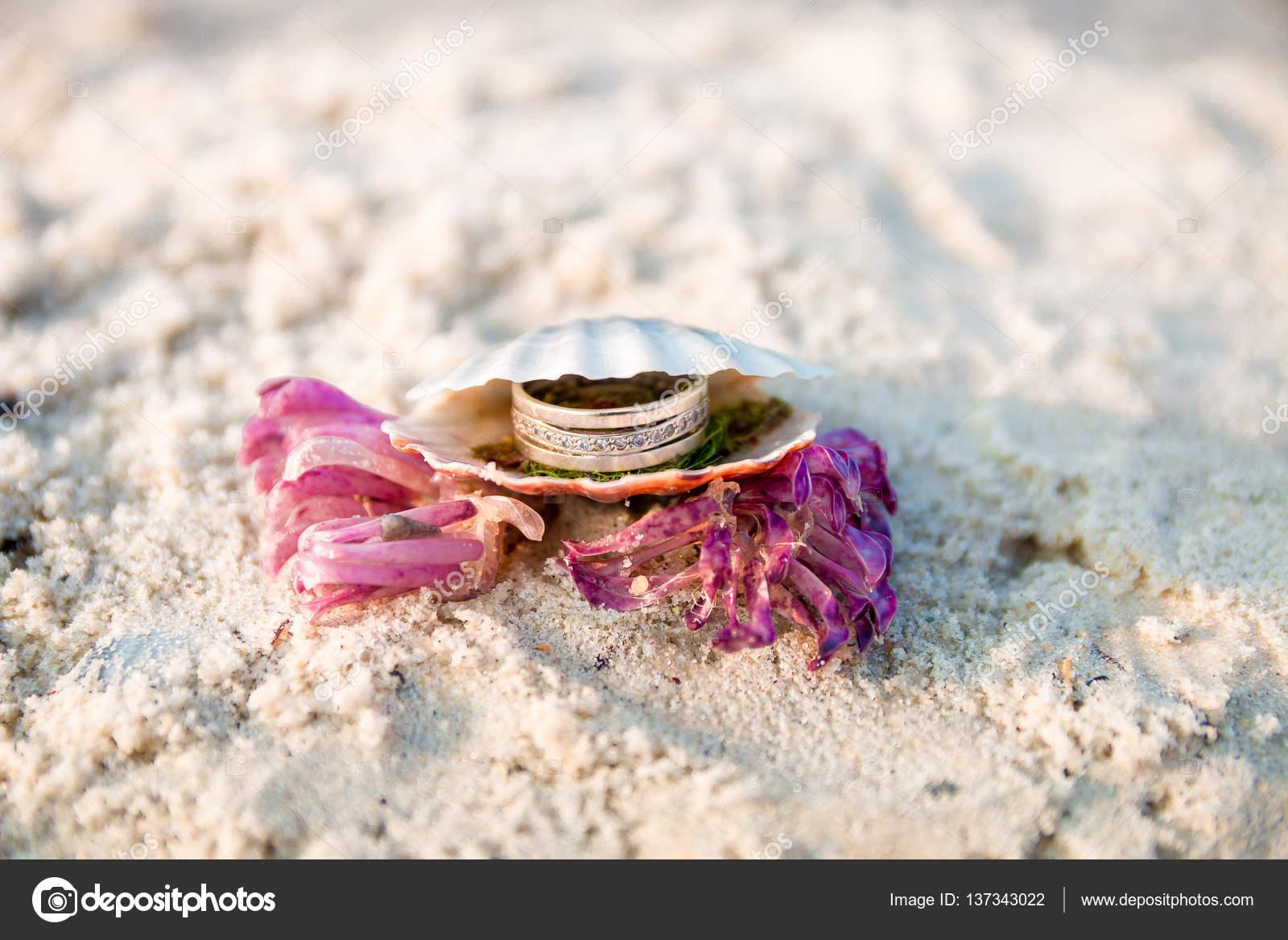 Anillo de compromiso en concha abierta en la playa del océano. Copia ...