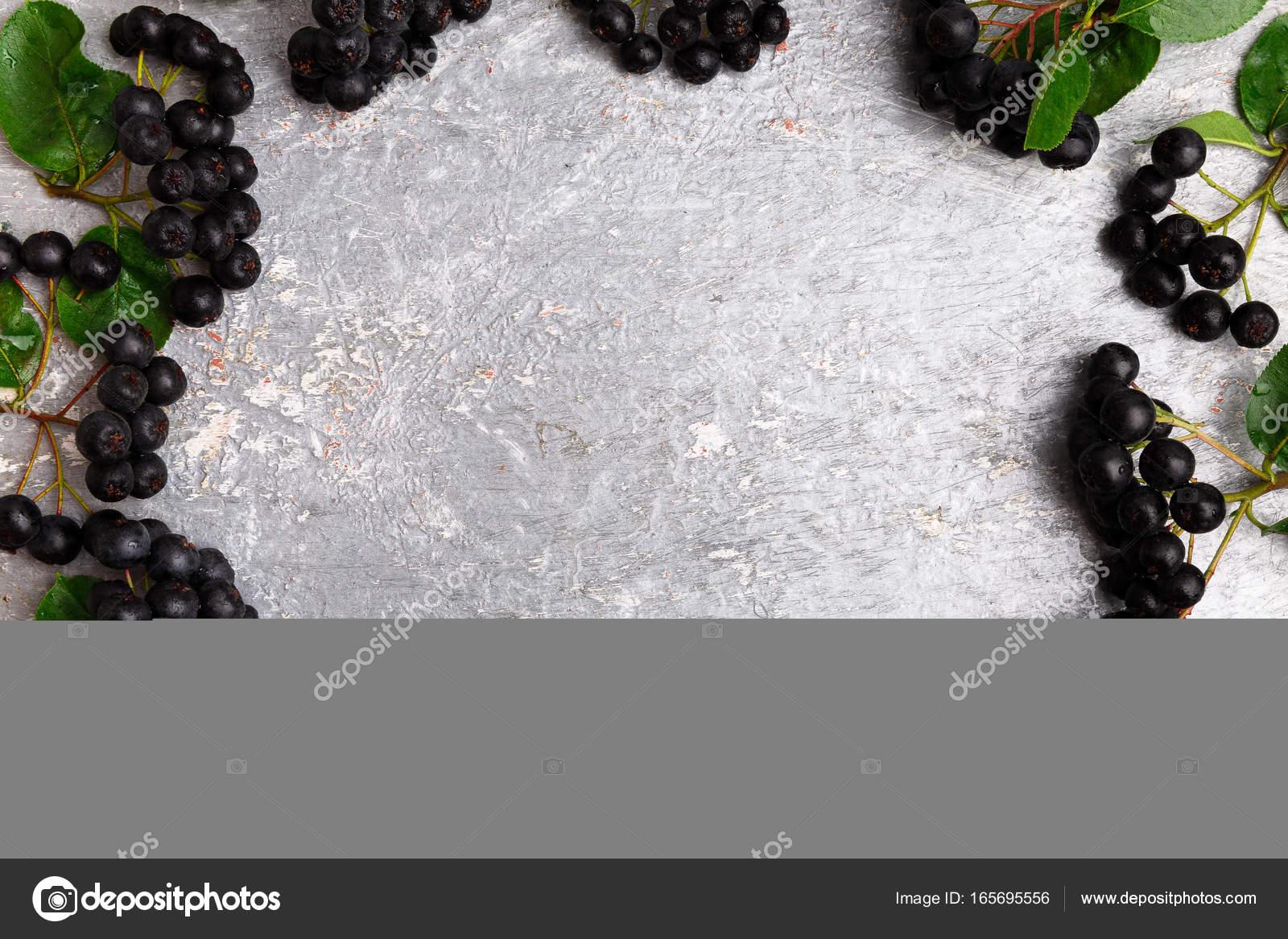 Aronia Auf Grauem Hintergrund Aronia Beere Mit Blatt Ansicht Von