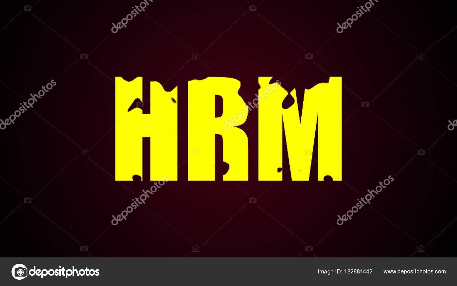 Texto de la gestión de recursos humanos. Resumen de antecedentes ...