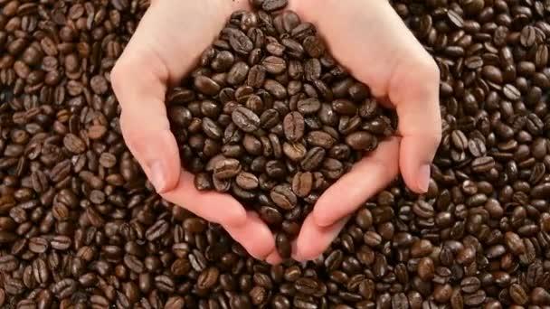 Kávébab. A pörkölt kávébab lassan leesik a kezéről.