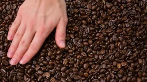 Hand is touching coffee beans. Pile of roasted coffee beans