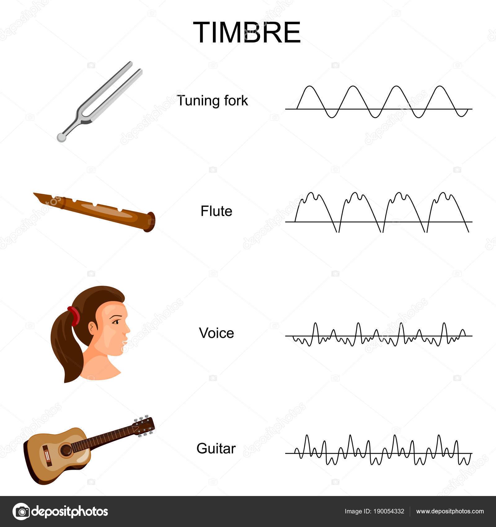 diagrama del sonido educaci n gr fico de diagrama de timbre de diferentes sonidos vector de. Black Bedroom Furniture Sets. Home Design Ideas