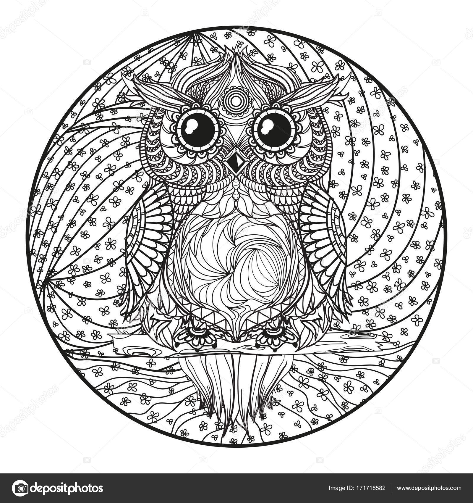 Mandala Owl Zentangle Stock Photo 169 Mikabesfamilnaya