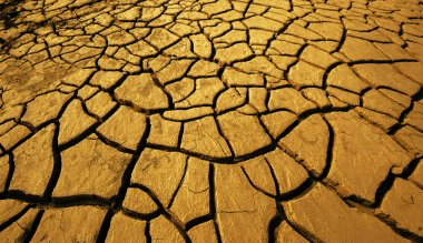 crack earth, dry ground surface