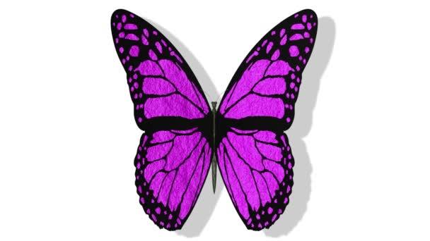 Videa. 3D ilustrace. Barevné motýly s otevřenými křídly na bílém pozadí.