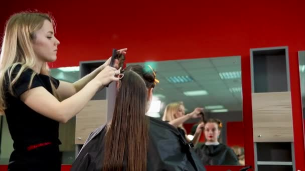 Female hairdresser pricking customers hair. Process of making stylish hairstyle