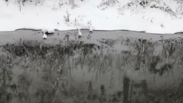 Snowflakes falling, snowfall. Scenic winter landscape. River