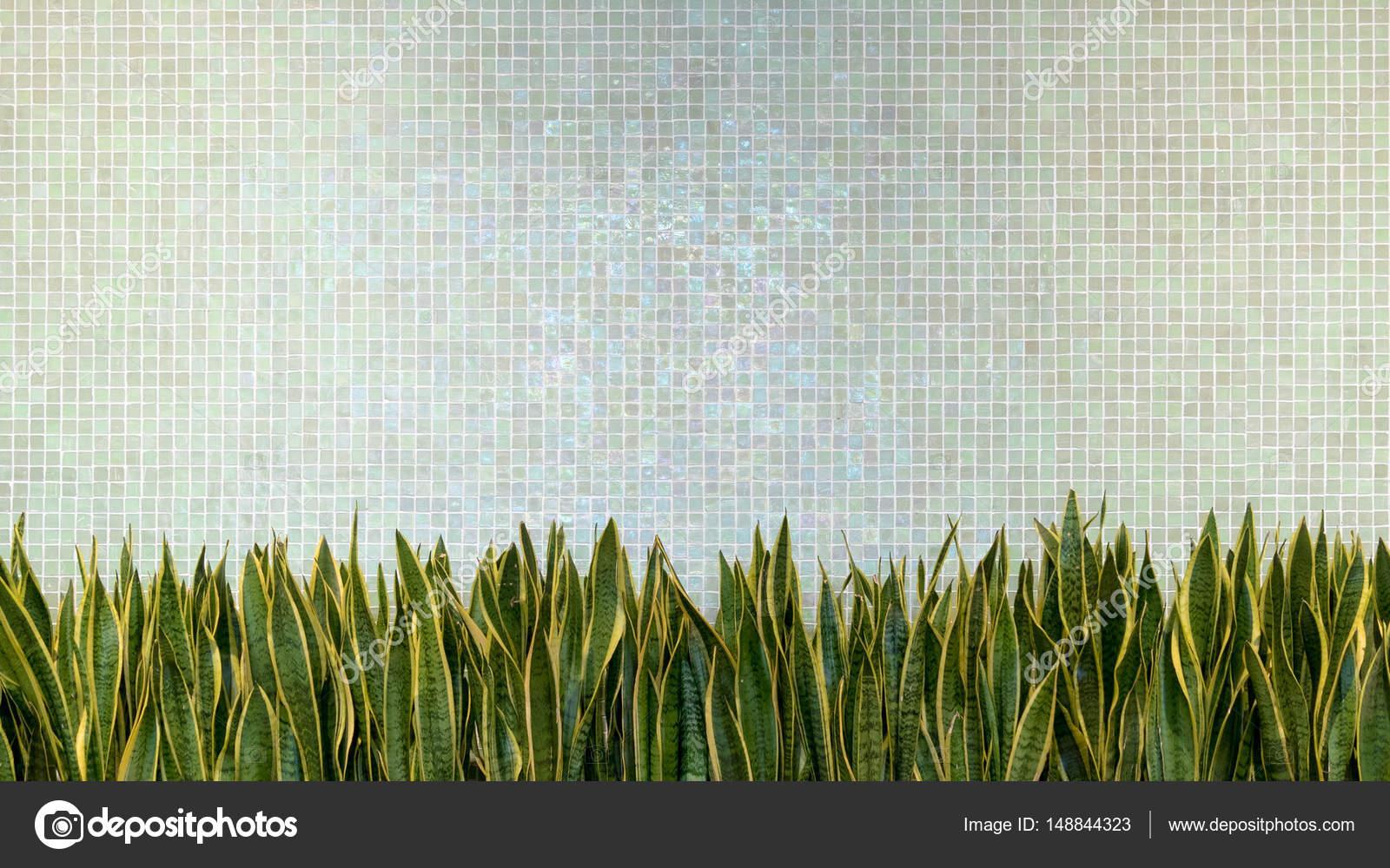 Parete verde piastrelle in porcellana mosaico texture sfondo con