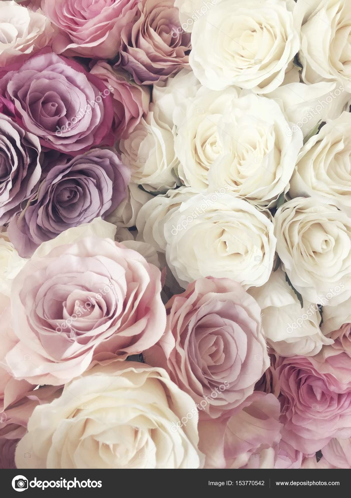 sch ne vintage rose hintergrund wei rosa lila violett creme farbe bouquet blumen floralen. Black Bedroom Furniture Sets. Home Design Ideas