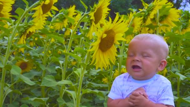 otec a syn hraje s květem slunečnice