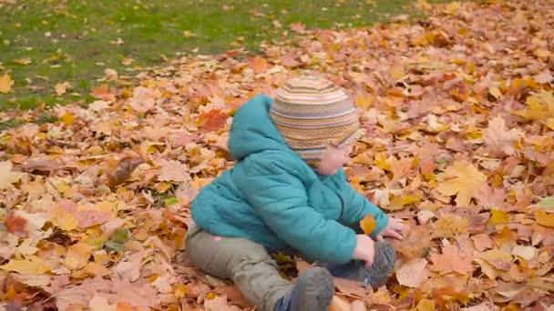 Dítě v podzimní dřeva, husí kůži a vany v listí