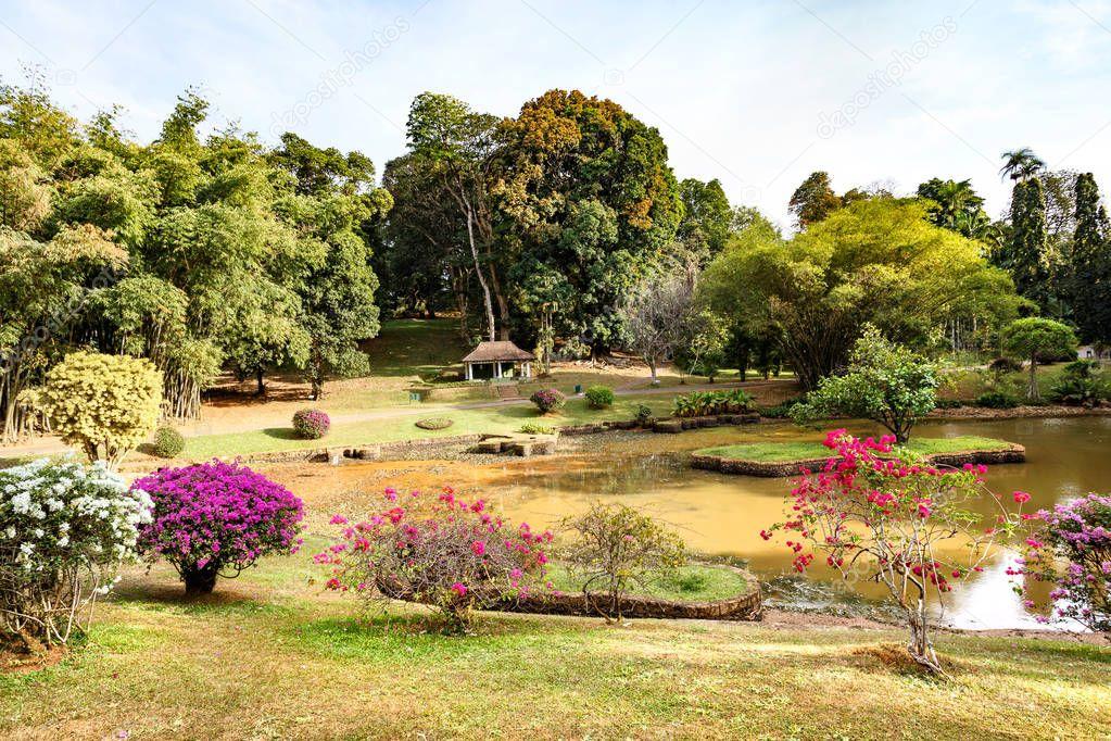 Beautiful tropical landscape