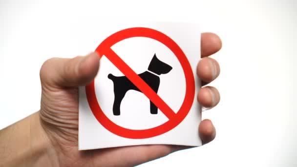 Keine Hunde erlaubt Zeichen isoliert. Hand zeigt Warnschild Keine Hunde