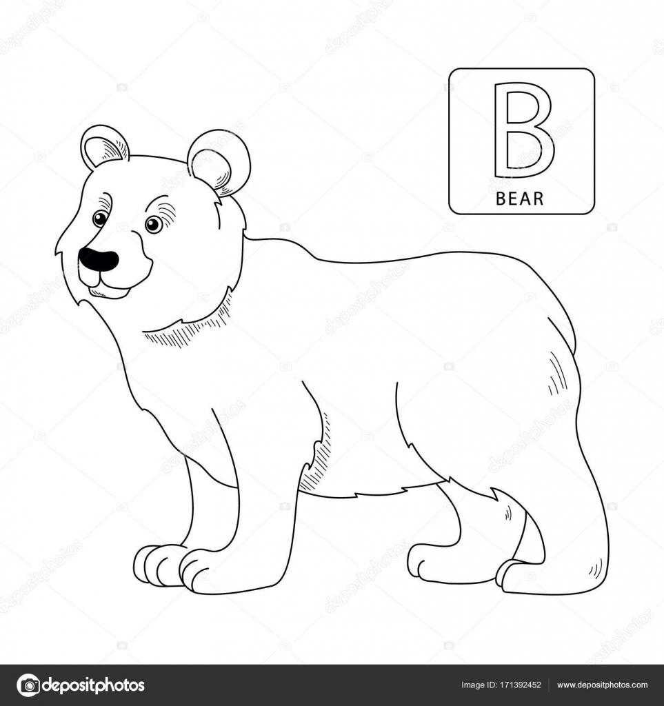 Contorno para colorear letras del alfabeto. Letra B. oso — Vector de ...
