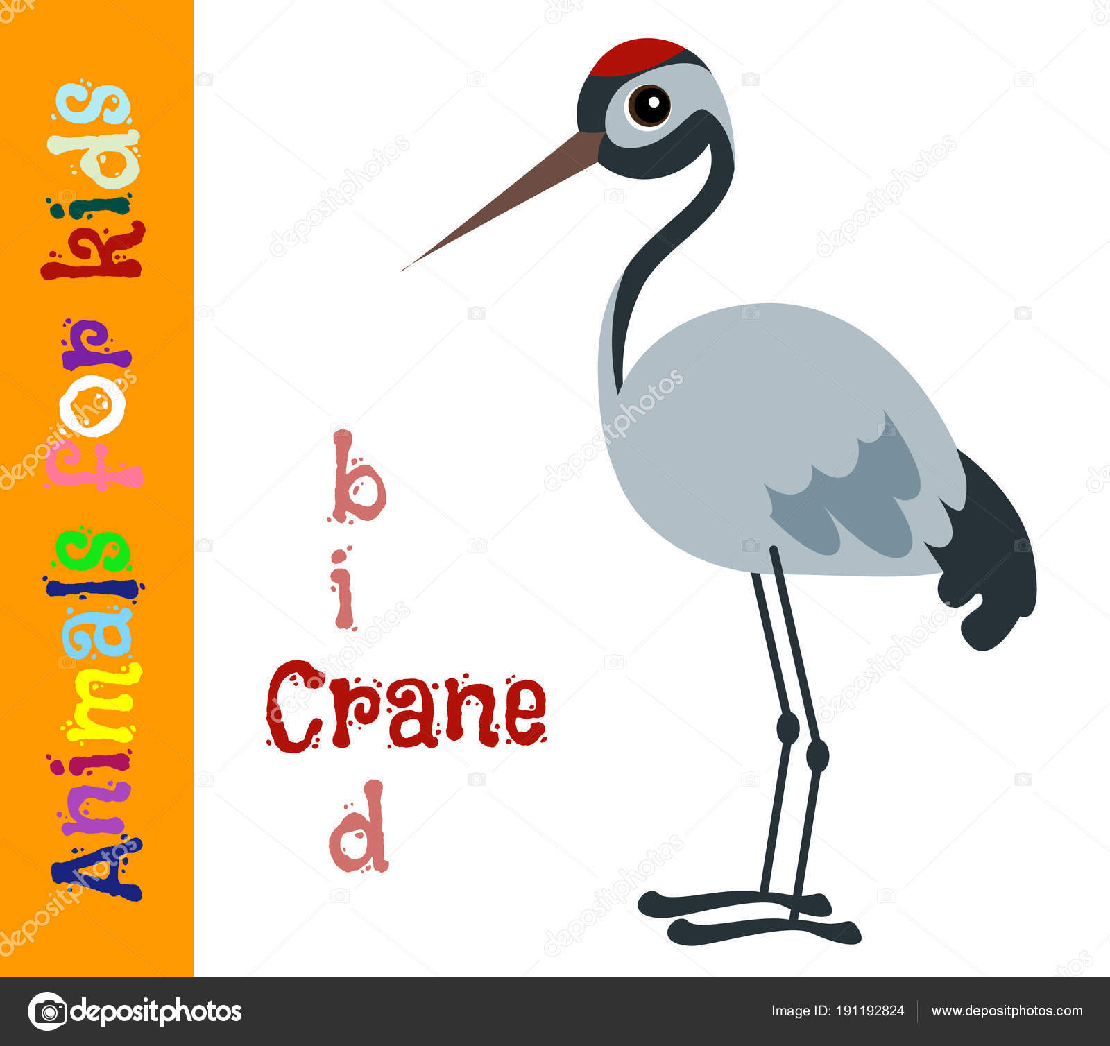 Immagini Gru Animale Disegno Gru Uccello Animali Per I Bambini