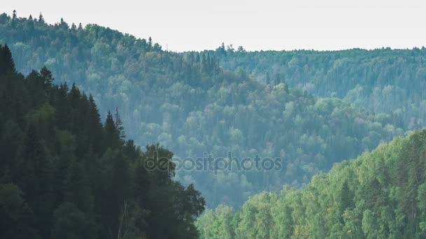 Tetejét a fenyők. Hegyvidéki fenyvesben. Szürke ég. Kis köd. Haze. Ősszel az Urál-hegység.