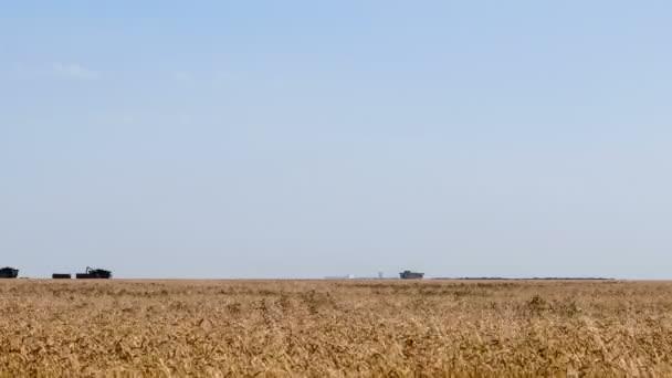 Kombajn stroj na sklizeň pšenice pole práce. Kombinovat kombajn zemědělství stroj sběr zlatá zralé pšeničné pole. Zemědělství
