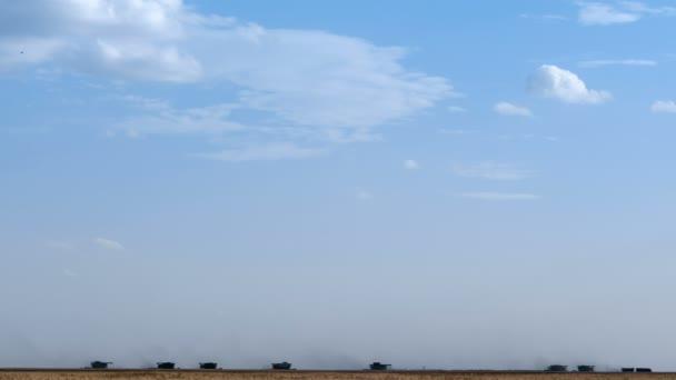 Kombajn stroj na sklizeň pšenice pole práce. Kombinovat kombajn zemědělství stroj sběr zlatá zralé pšeničné pole. Zamračená obloha