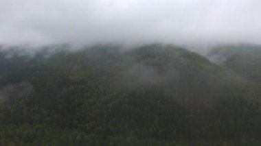 Aerial tracking shot of mountain river flowing between the mountains covered with forest. Gray rain clouds. Fog over the river.