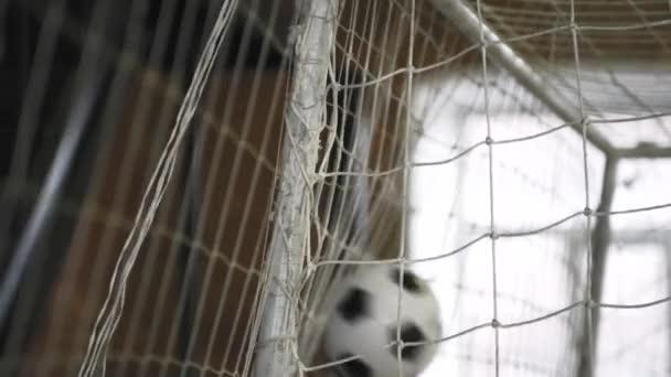 a futball-labda a kapuba nettó 3 lövés
