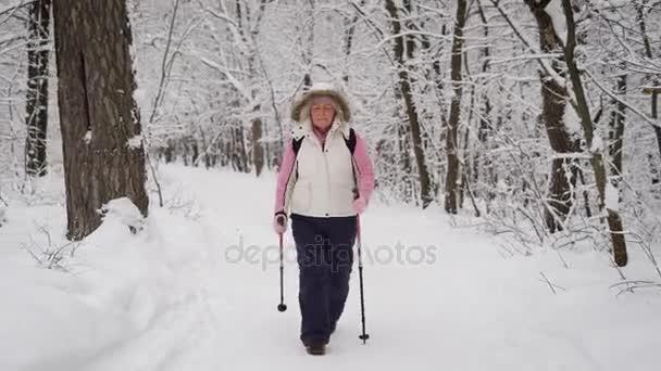 Energická žena v teple bílá vesta s kapucí a černé kalhoty, výdaje na její volný čas s aktivním na nordic walking, cvičení v lese. Šťastný, bývalý dáma je rychle krokování s Lyžařské hůlky.