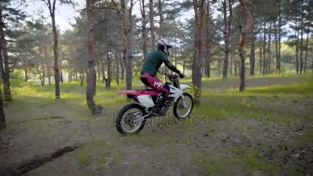 Motokrosové, enduro jezdec na les. Extrémní off-road závod. Těžké enduro motorky.